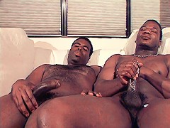Sexy black cubs wanking off after a hot ass drilling