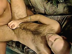 Hairy gay bears Cody and Chris Yeager pleasuring each other indoor in a comfy couch