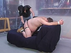 Furry bear gets his bare ass spanked